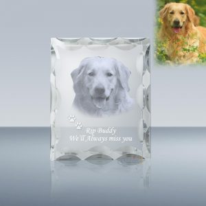 Baby-and-Pet-A035 3D Photo Crystal