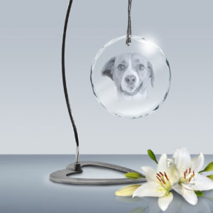 Picture Crystal Ornament XL